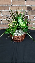 Mixed Planter Basket (3)