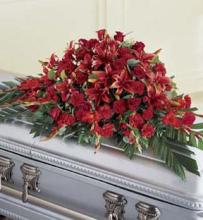 Red Splendor Casket Spray