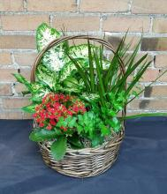 Mixed Planter Basket (2)